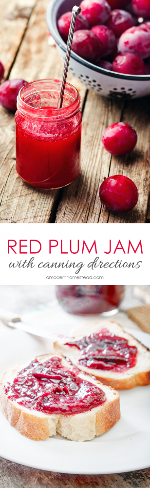 How to can Red Plum Jam! This is so delicious, I always make at least 6 jars during the summer!