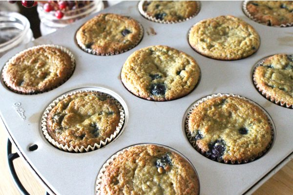 Coconut flour blueberry muffins in paper liners in a muffin pan